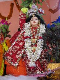 Navadvipa-Thakurji