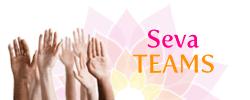 seva-teams_2